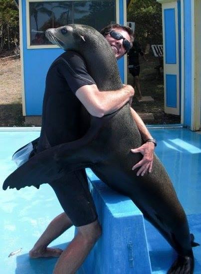sea lion expert