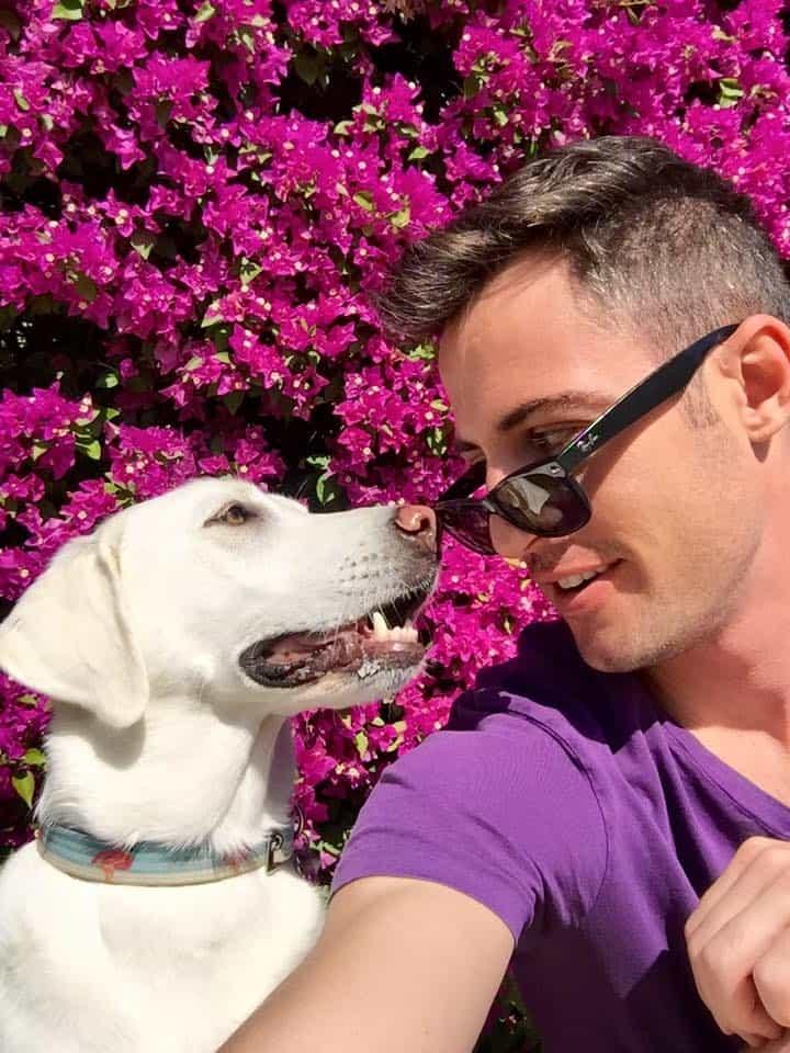 dog trainer expert