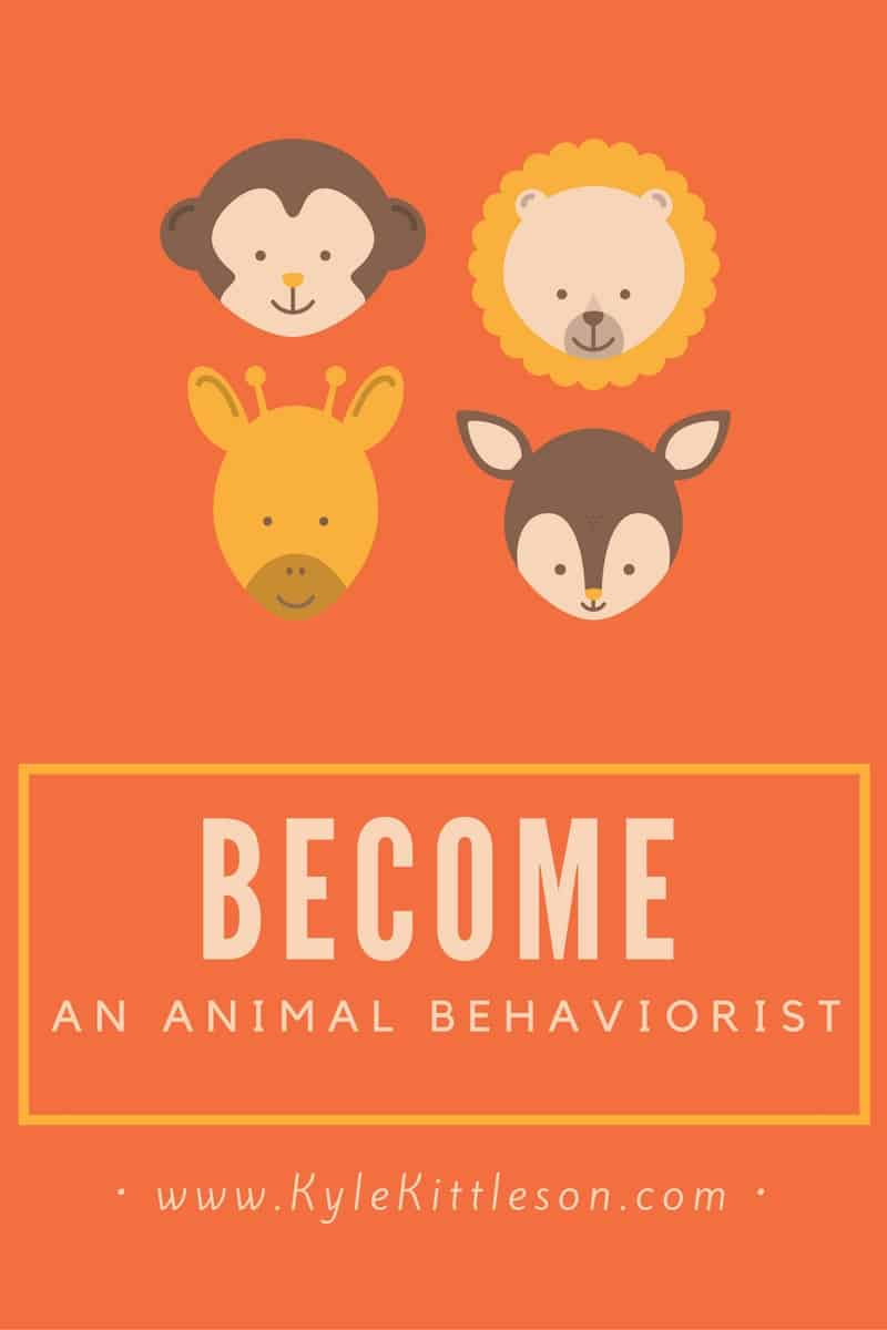 how-to-become-an-animal-behaviorist