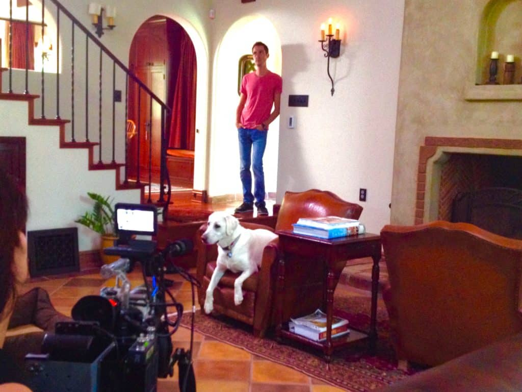 dogs-for-television