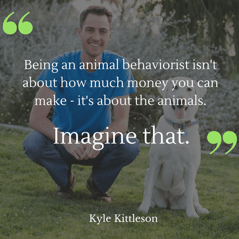 animal-behaviorist-salary